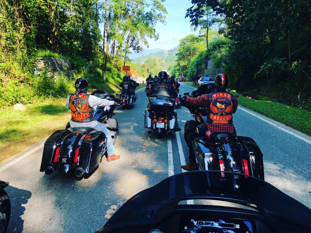 Harleys Hitting Back at the Road